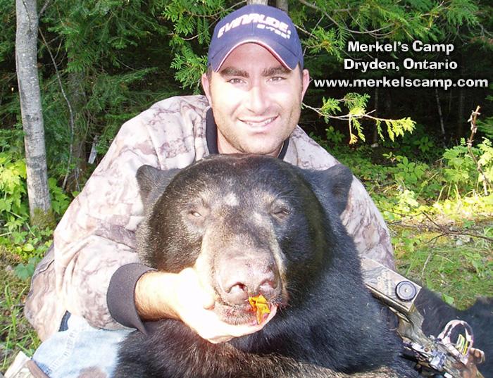 Need A Car Sudbury >> Ontario Trophy Black Bear Hunting Photos