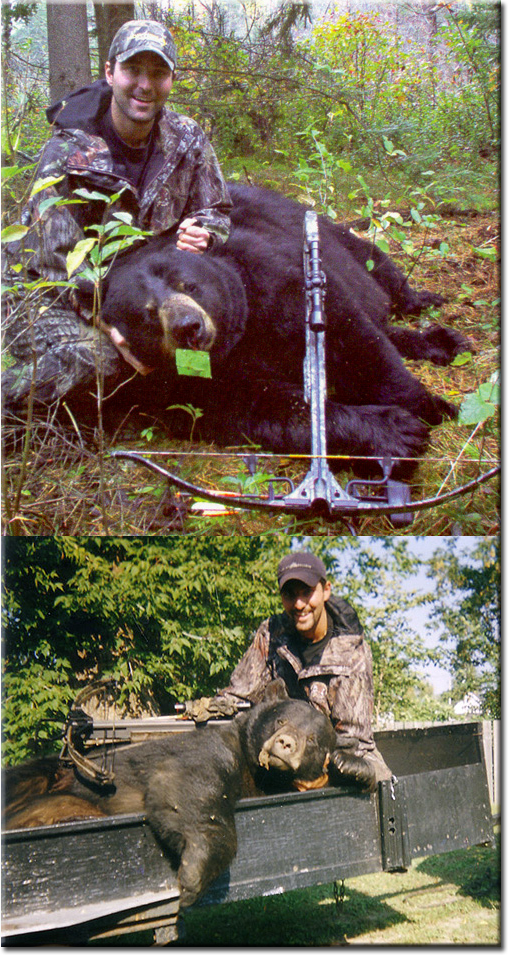 Ontario record black bear crossbow the first picture is a 780 pound black bear harvested in 2007 by ken loya jr publicscrutiny Choice Image